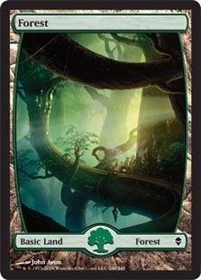 Forest - Zendikar (246)