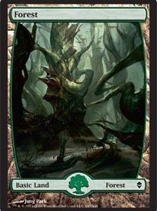 Forest - Zendikar (247)