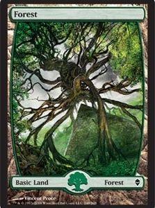 Forest - Zendikar (249)