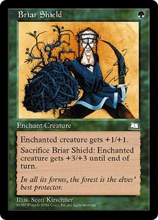 Briar Shield