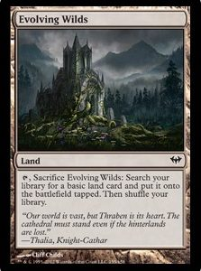Evolving Wilds (FOIL)