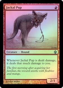 Jackal Pup (FOIL)