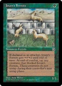Joven's Ferrets