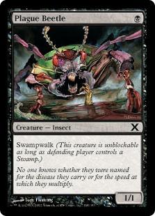 Plague Beetle