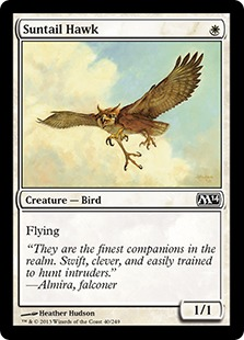 Suntail Hawk (FOIL)